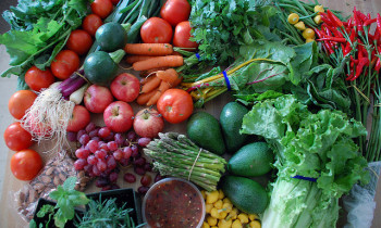 World Food Day: Steps Towards a Sustainable Future