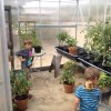 Bringing Your Kids into the Eco-Friendly Fold