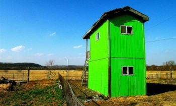 It's Easy Living Green: 12 Apps to Help