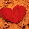 4 Eco-Friendly Things to Do for Valentine's Day