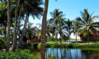 Tips on Enjoying a Green and Environmentally-Friendly Vacation