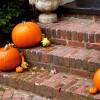 Environmentally-Friendly Pumpkin Tricks and Treats