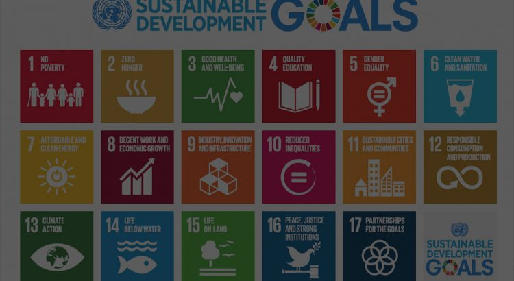 Biofriendly Corporation and Horeb Receive the Certificate of Alignment for their Corporate Strategy to the Sustainable Development Goals (SDGs) of the UN